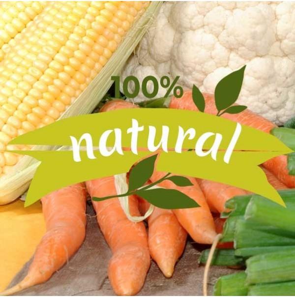 Alimentos ecológicos básicos  para subir tus defensas